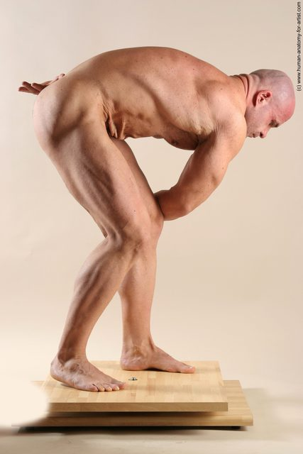 Nude Man White Laying poses - ALL Muscular Short Brown Laying poses - on back