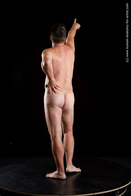 Nude Man White Chubby Short Brown Standard Photoshoot