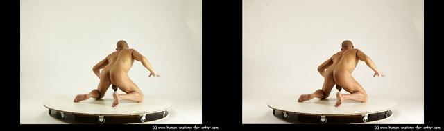 Nude Man White Kneeling poses - ALL Muscular Short Brown Kneeling poses - on both knees 3D Stereoscopic poses