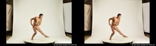 stereoscopic ross