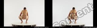stereoscopic boris 441