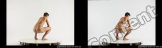 stereoscopic boris 442